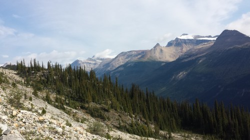 Iceline Trail im Yoho National Park