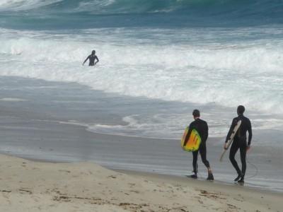 Surfen in San Diego
